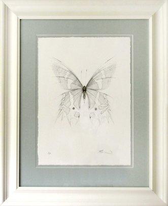 Butterfly by artist Jessica Albarn