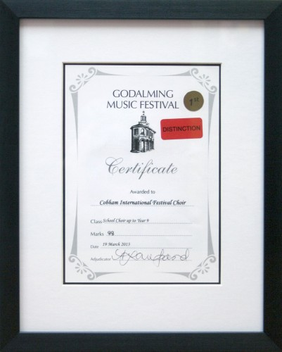 Music Festival Certificate